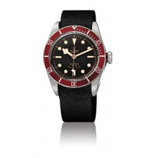Replica Tudor Heritage Black Bay SteelAdvisor Steel and Titanium -79220R unisex Watch